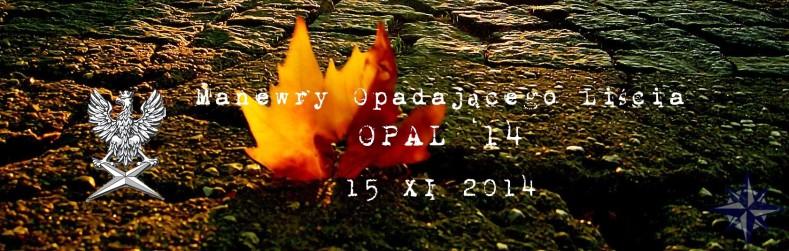 Manewry Opadającego Liścia OPAL'14